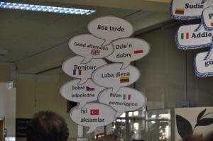 portuguese school erasmus partner