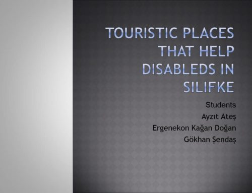 Here are some slay't about the city what is done for disabled people